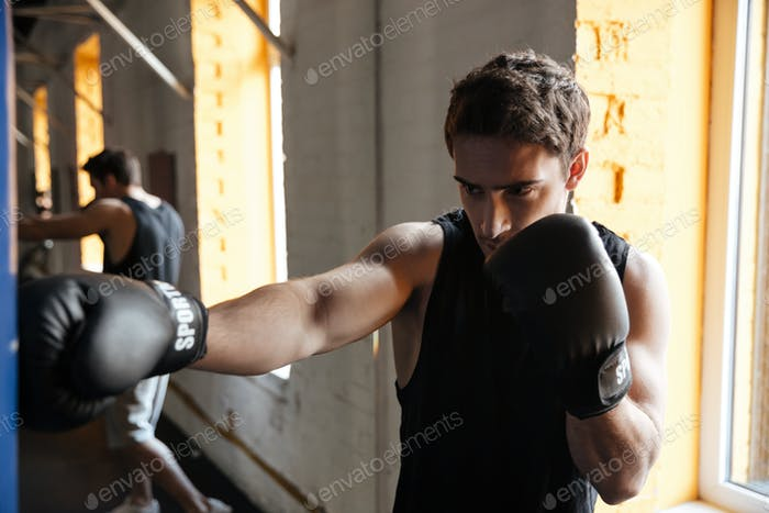 Strong boxer training in a gym