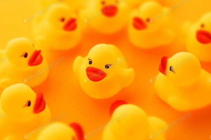 Grupo de patos de goma charlando
