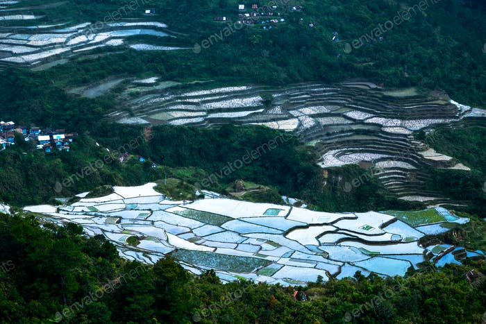 Thumbnail for Abstract rice terraces texture with sky reflection. Banaue, Phil