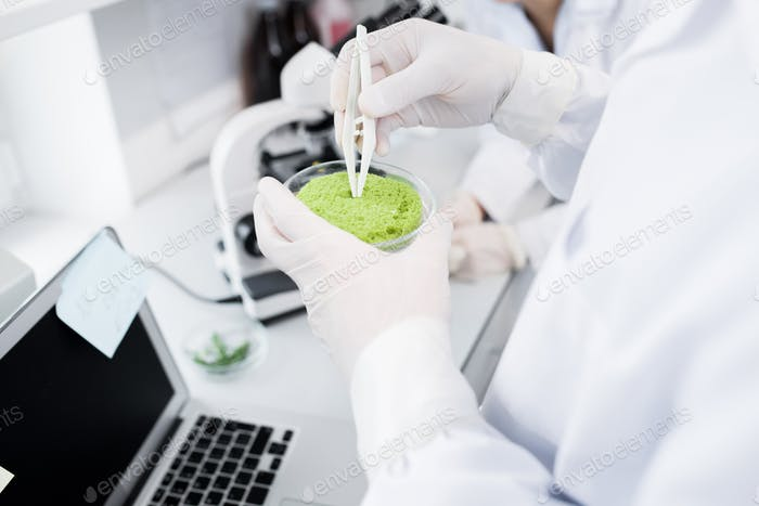 Scientist Studying Substances