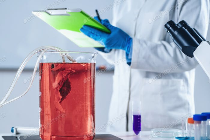 Cultured Meat. Female Scientist Taking Notes in Laboratory