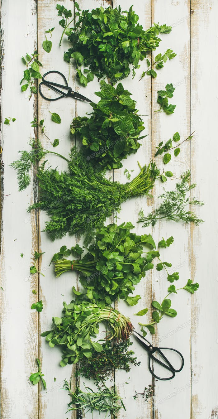 Various fresh green kitchen herbs over white wooden background