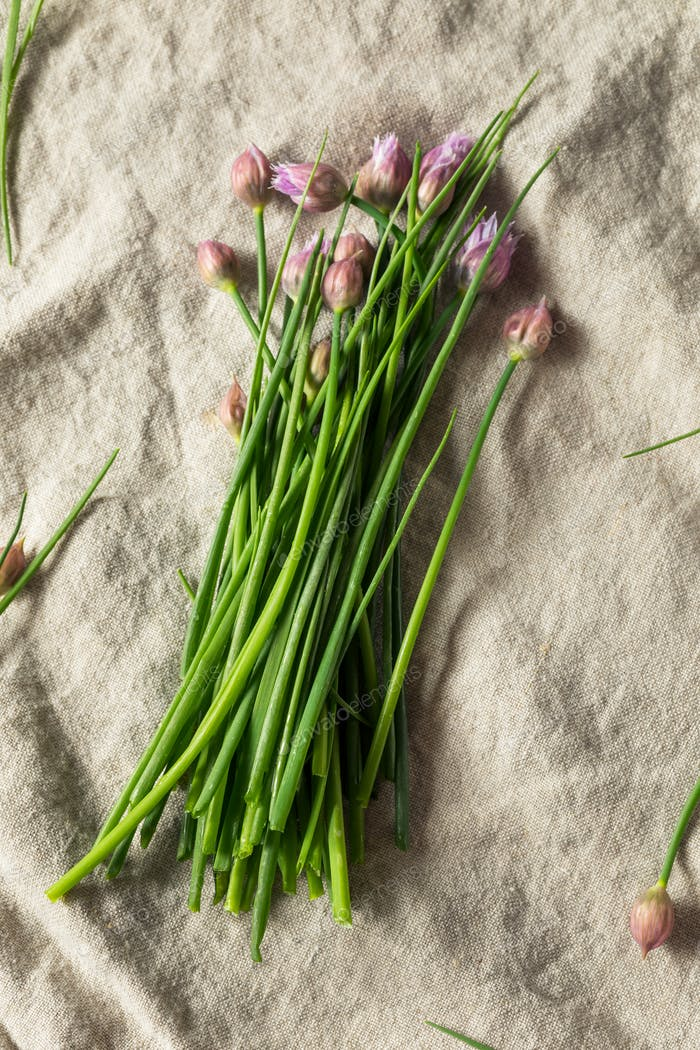 Raw Green Organic Flowering Chives