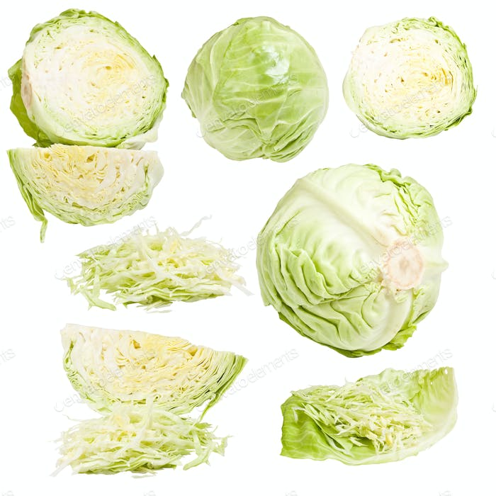 Collection of cabbage