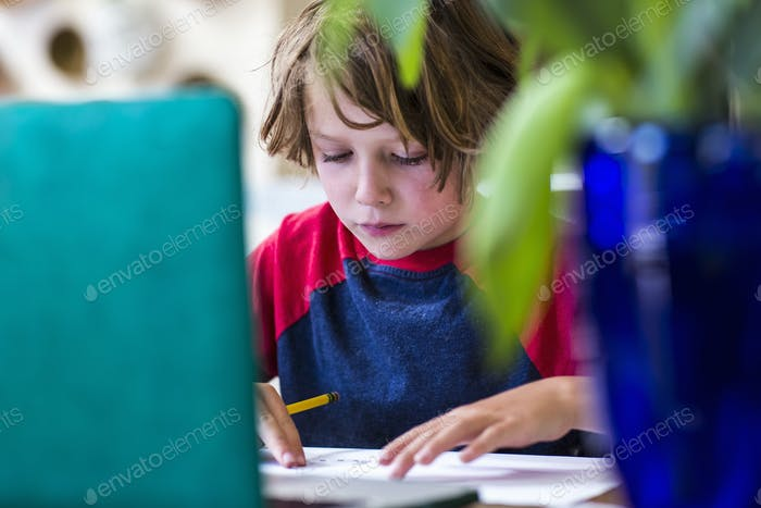 6 year old boy using laptop for remote schooling at home