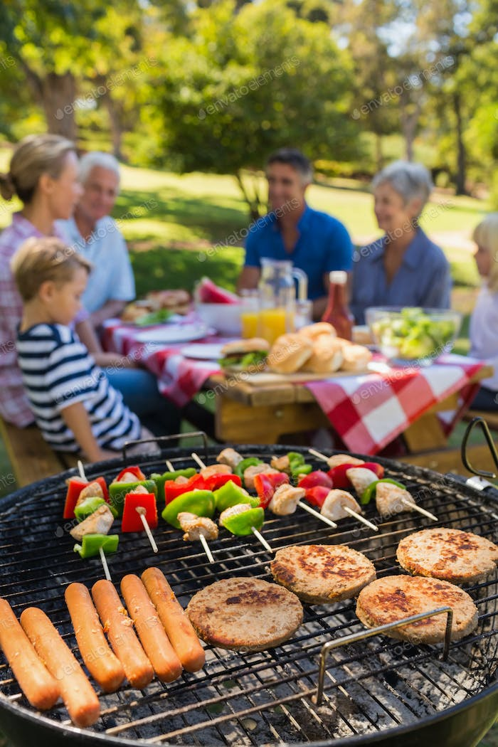 Family doing barbecue in the park on a sunny day