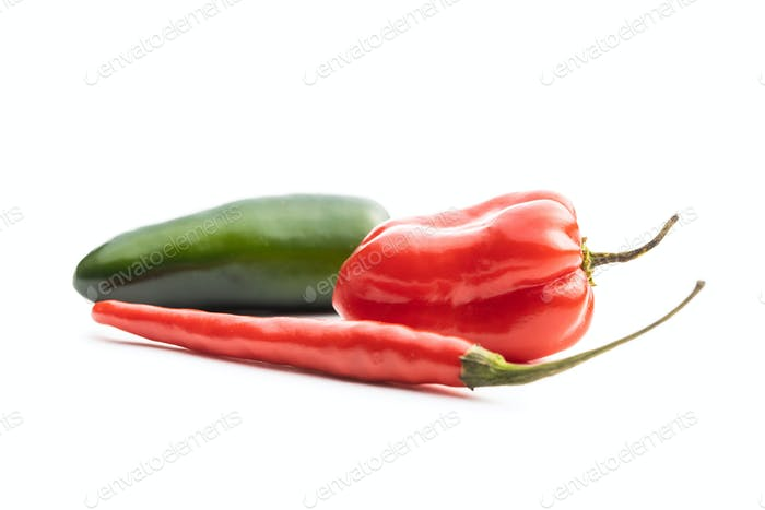 Hot jalapeno, habanero and chili peppers.