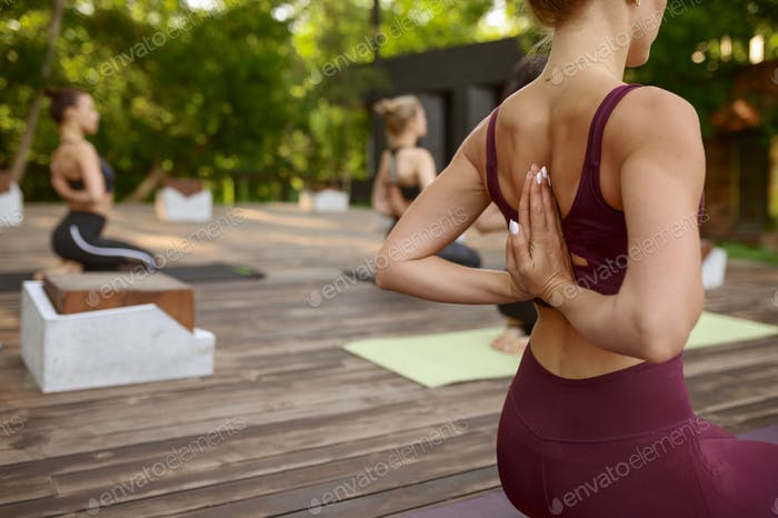 Attractive women on group yoga training in park