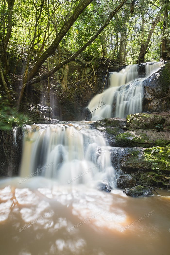Karura Forest Waterfall in Nairobi, Kenya