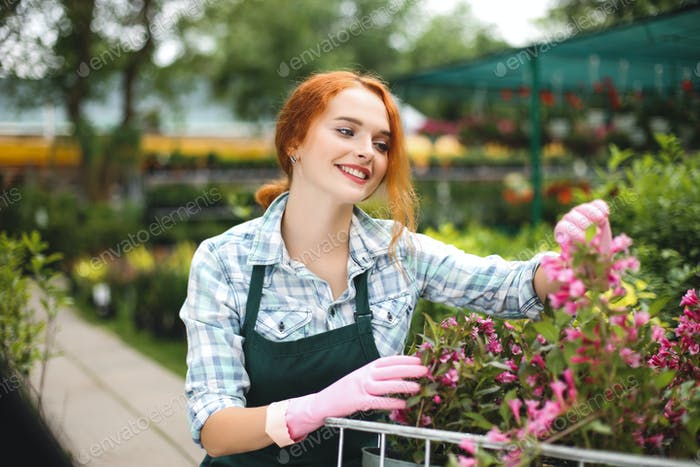 Cheerful florist in apron and pink gloves happily looking aside