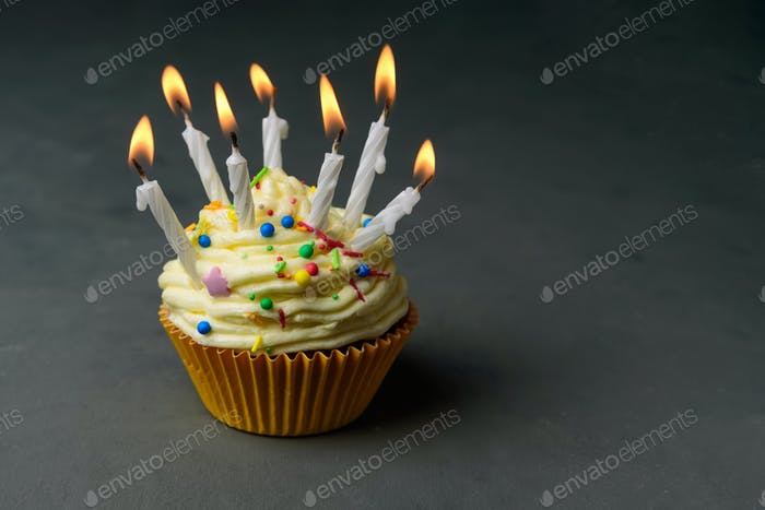 Birthday cupcake with many candles