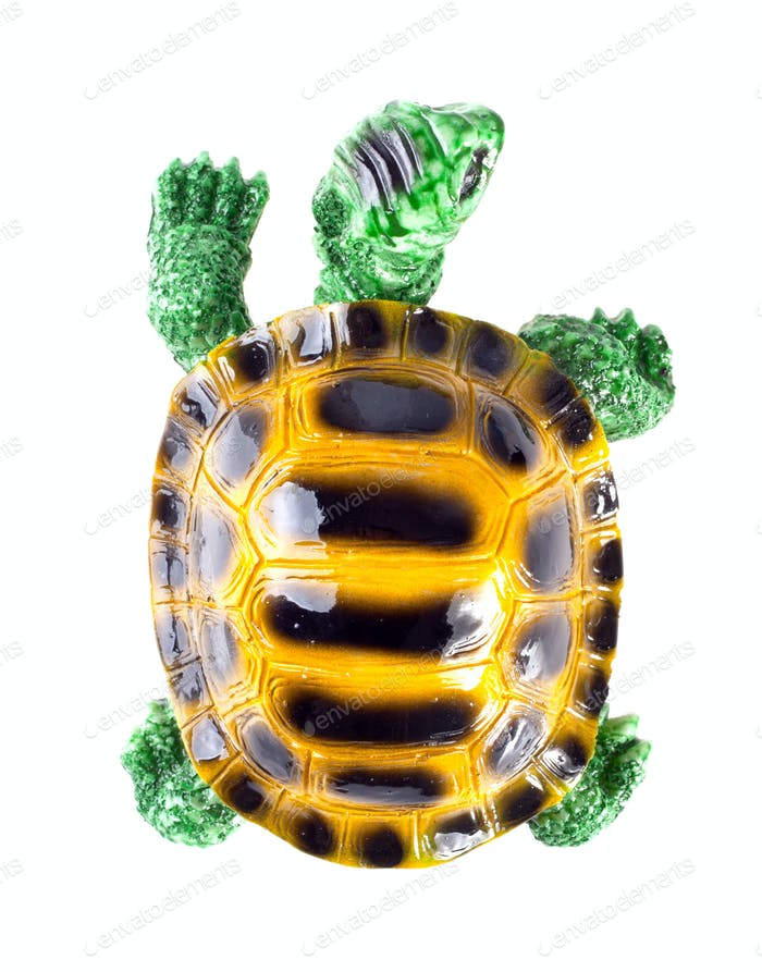 Keramikfigur Schildkröte