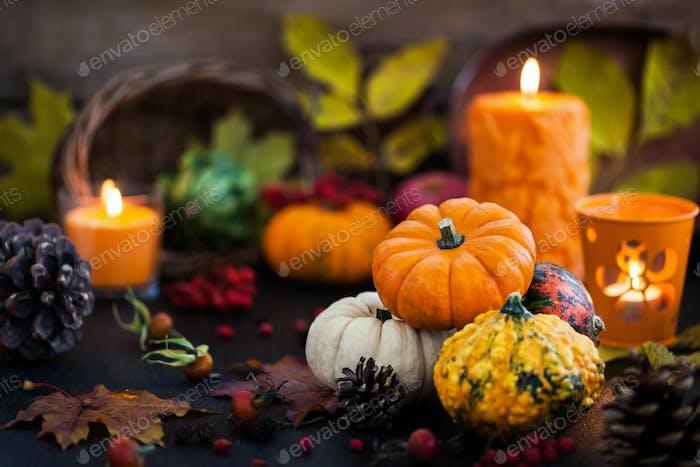 Herbstliche bunte Kürbisse auf Kerze und gefallenen Blättern Backgro