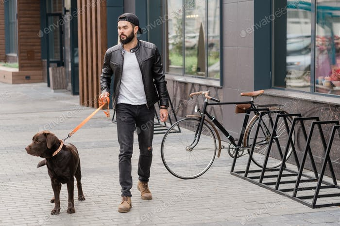 Handsome guy in casualwear holding leash while taking walk with his pet