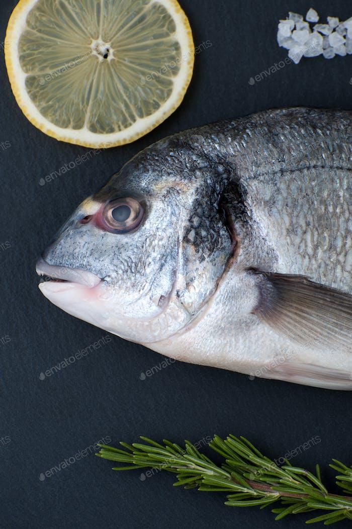 Thumbnail for Fresh Dorado fish, lemon, rosemary and salt close-up on a black