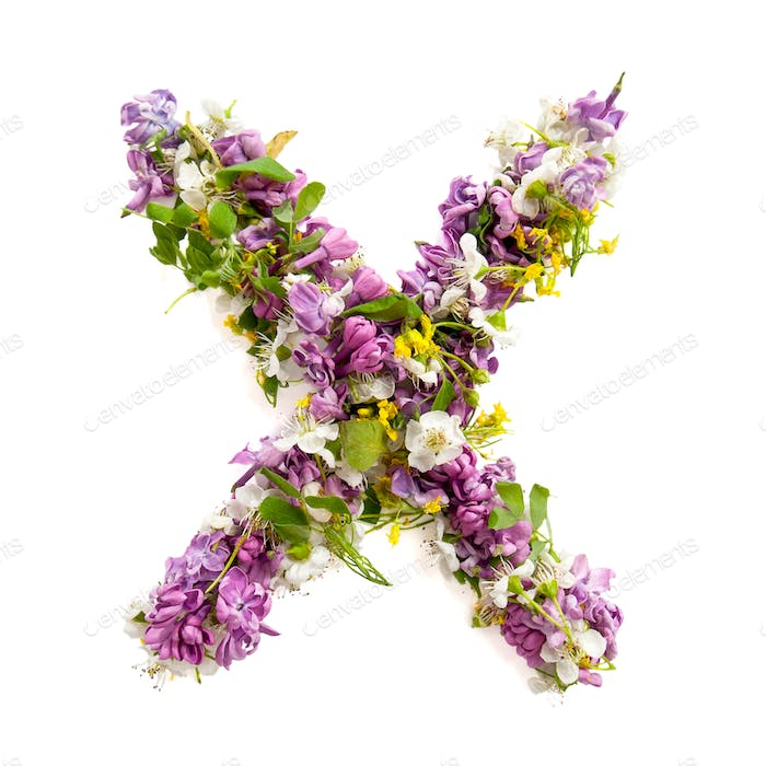 The letter «X» made of various natural small flowers.