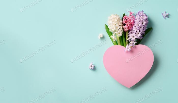 Spring hyacinth flowers and pink paper heart on blue punchy pastel background. Banner with copy