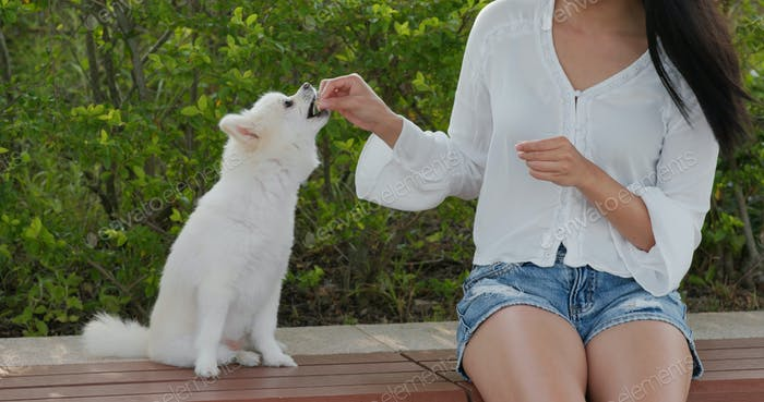 Woman gives treat to her dog