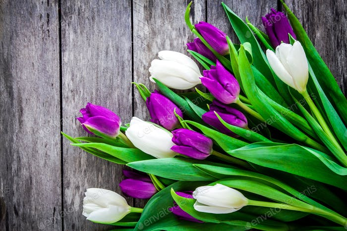 bouquet of purple and white tulips on a rustic background