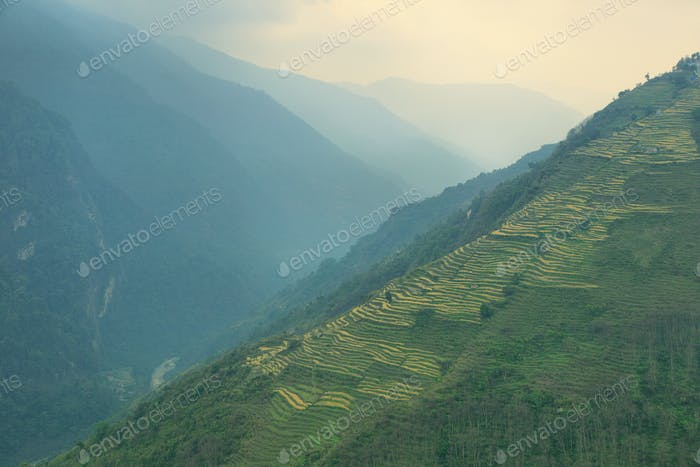 Fields and foggy mountains in Nepal