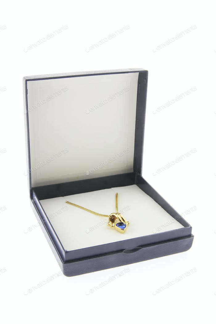 Gold Chain with Pendant in Box