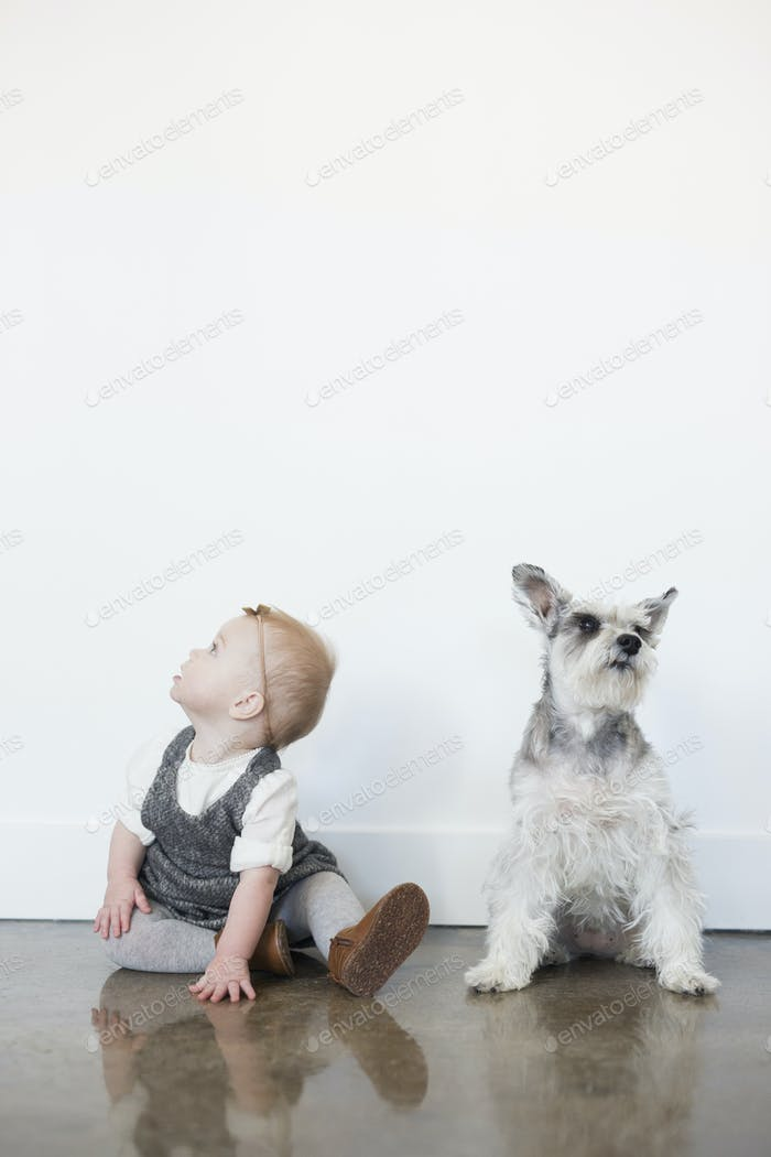 A young girl and a small dog sitting side by side on the floor.