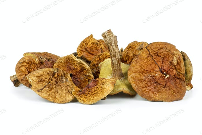 Small pile of dried cepe mushrooms