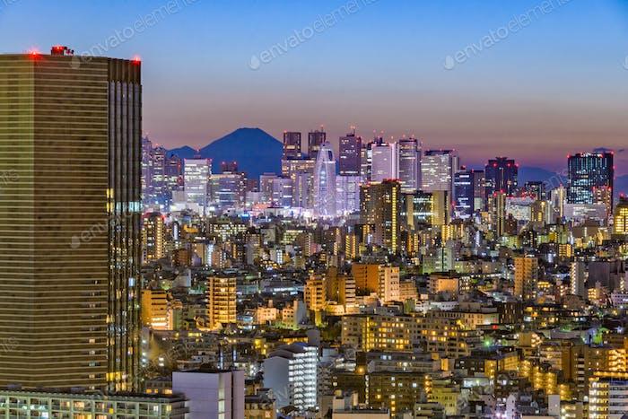 Tokyo Skyline und Fuji Mountain