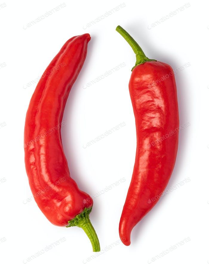 Rote Chilischote auf weißem Hintergrund