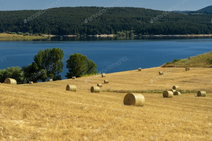 Summer landscape along the road to Camigliatello, Sila. Cecita lake