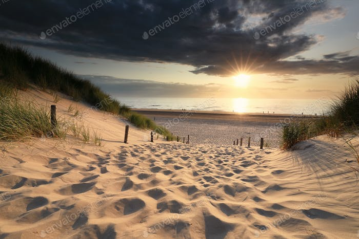 sand path to sea beach in summer at sunset