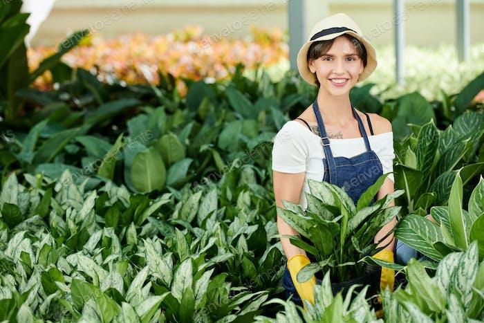 Female gardener planting flowers