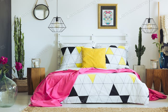Unique geometric bedclothes and cactus
