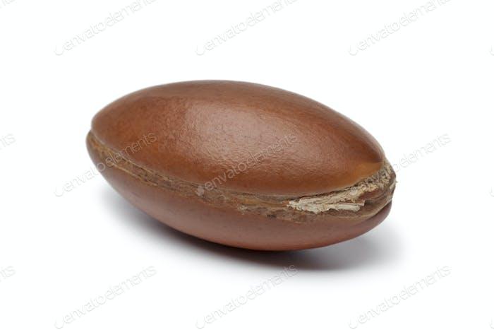 Whole single Argan nut