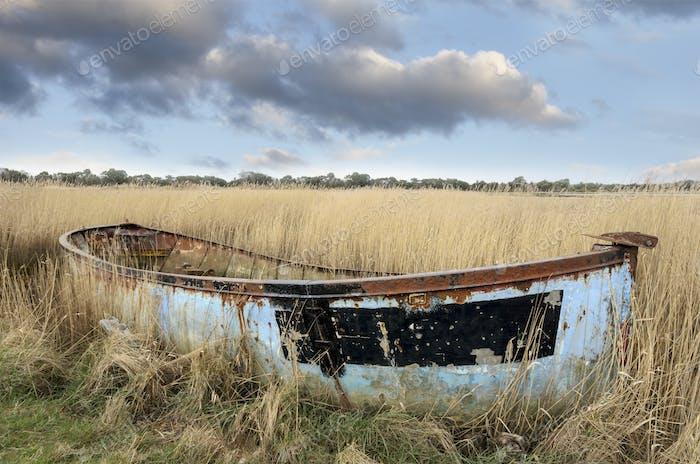 Shipwrecked Boat