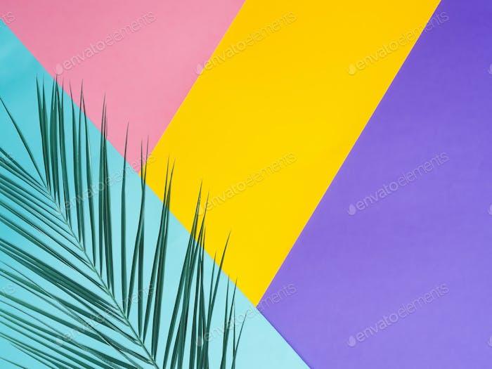 Farbiger Papierhintergrund mit tropischem Blatt
