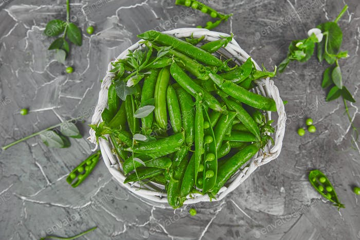 White Basket with fresh green peas on grey background.