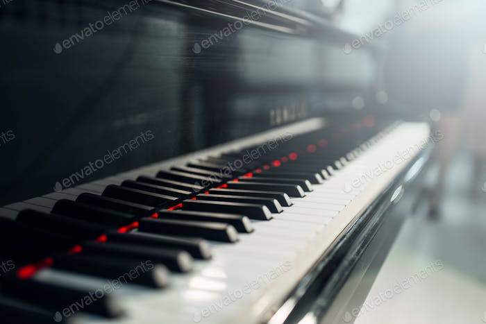 Grand piano keys closeup, nobody