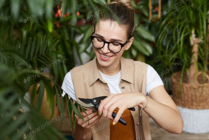 Woman caring about old plant