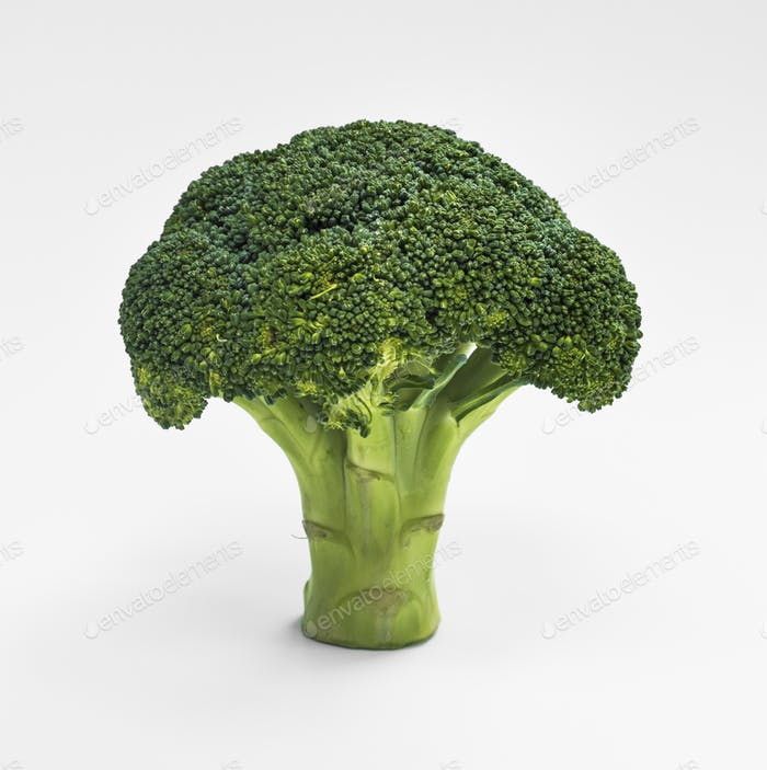 Closeup of fresh real broccoli isolated on white