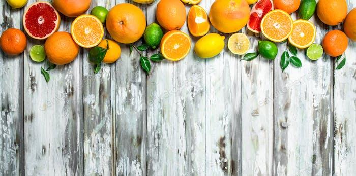 Saftige Zitrusfrüchte mit Blättern.