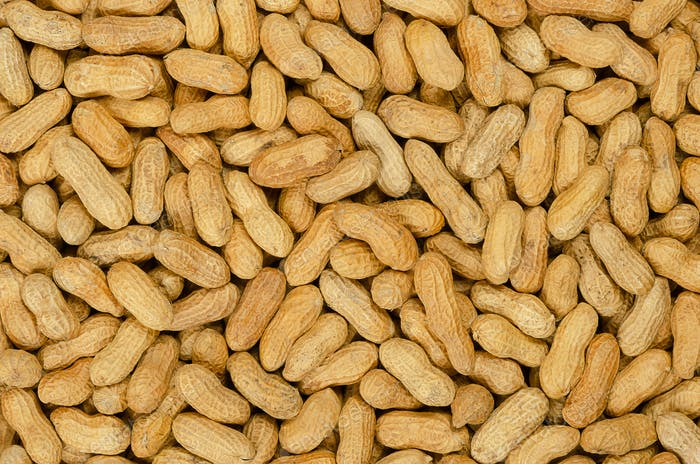 Peanuts with shell, background
