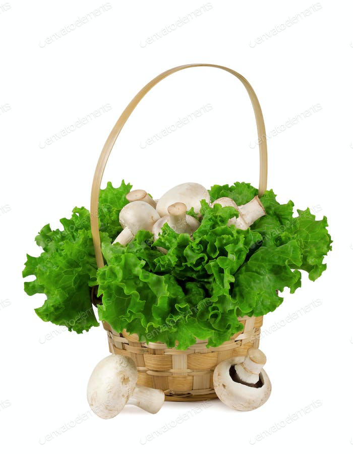 Mushrooms in a basket with lettuce