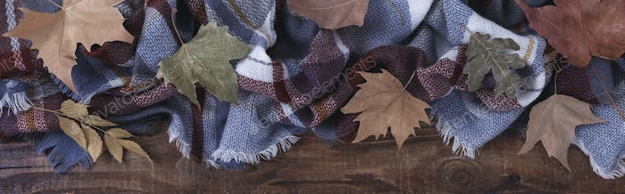 Autumn leaves on a blanket