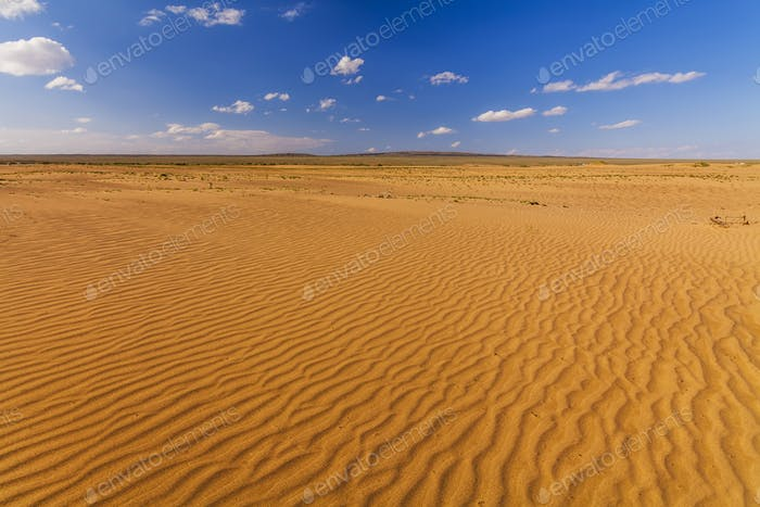 Beautiful views of the Sahara desert