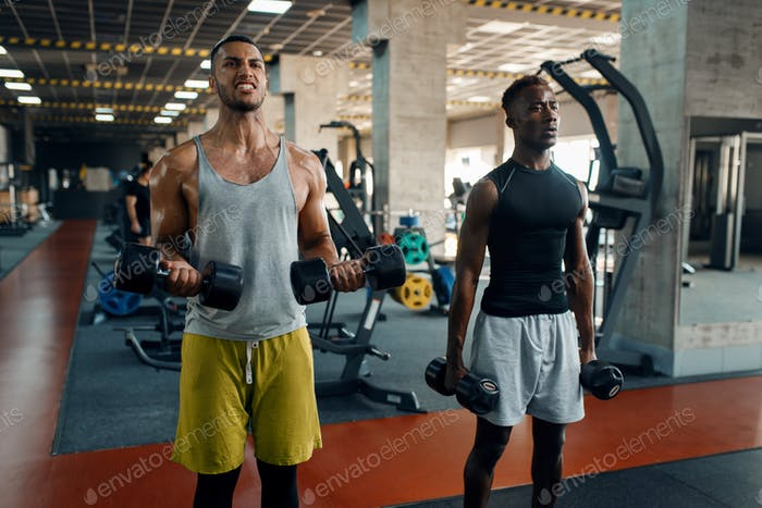 Two muscular men doing exercise with dumbbell