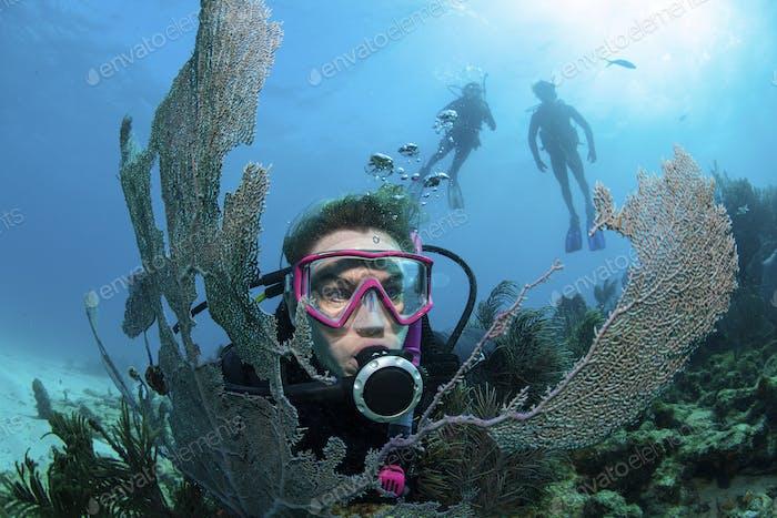 Scuba diver framed by sea fan.