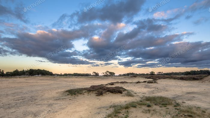 Sunset over sand dunes in Hoge Veluwe