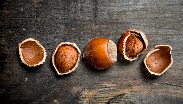 Hazelnut with shell .
