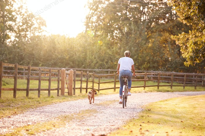 Rear View Of Woman With Pet Dog Riding Bike Along Country Lane At Sunset